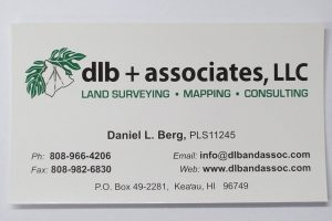 Business Card For Daniel L. Berg of dlb + associates, LLC